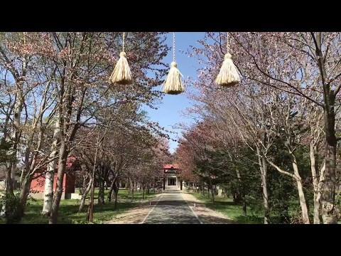 『北海道江別市』の動画を楽しもう!