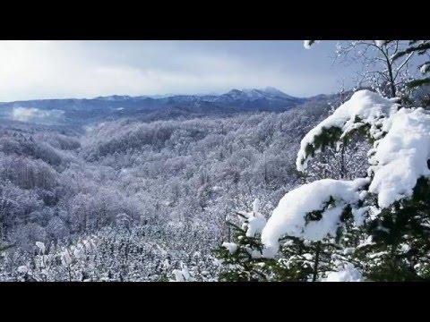 『北海道樺戸郡新十津川町』の動画を楽しもう!