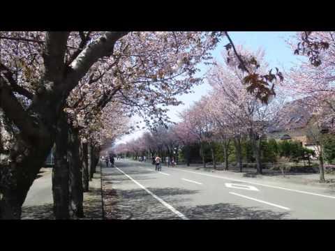 『北海道千歳市』の動画を楽しもう!