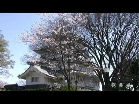 『千葉県千葉市中央区』の動画を楽しもう!