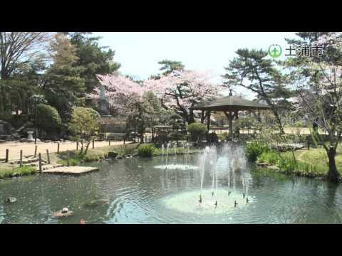 『茨城県土浦市』の動画を楽しもう!