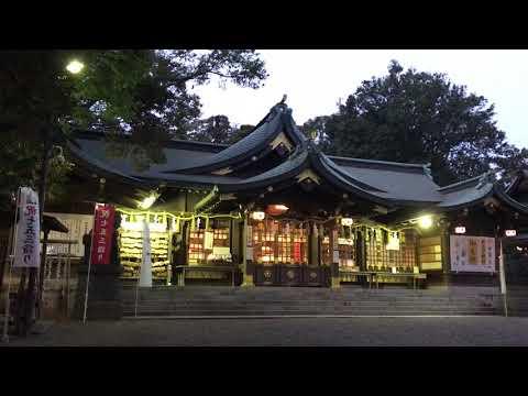 『千葉県千葉市花見川区』の動画を楽しもう!