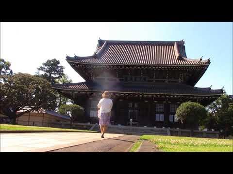 『神奈川県横浜市鶴見区』の動画を楽しもう!