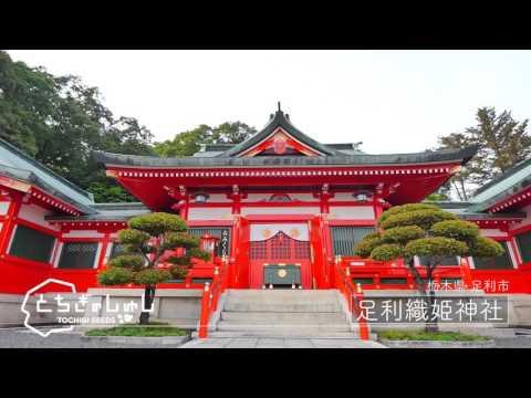 『栃木県足利市』の動画を楽しもう!