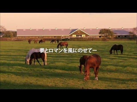 『北海道沙流郡日高町』の動画を楽しもう!