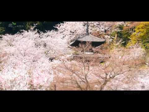 『和歌山県海南市』の動画を楽しもう!
