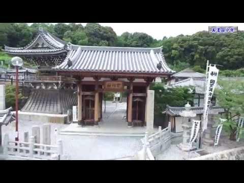 『岐阜県大垣市』の動画を楽しもう!