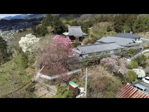 『和歌山県橋本市』の動画を楽しもう!