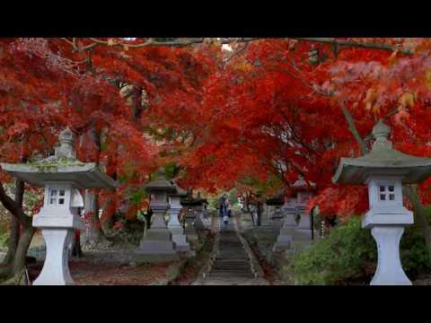 『長野県長野市』の動画を楽しもう!