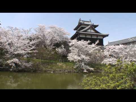 『奈良県大和郡山市』の動画を楽しもう!