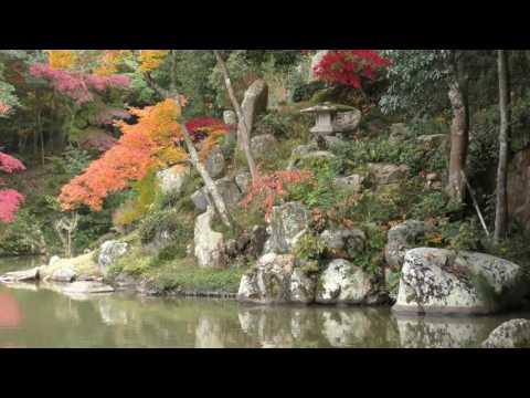 『岡山県岡山市中区』の動画を楽しもう!