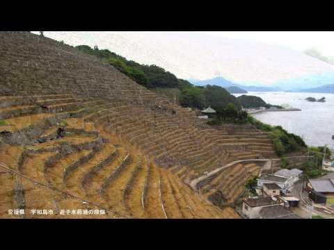 『愛媛県宇和島市』の動画を楽しもう!