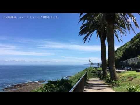『宮崎県宮崎市』の動画を楽しもう!