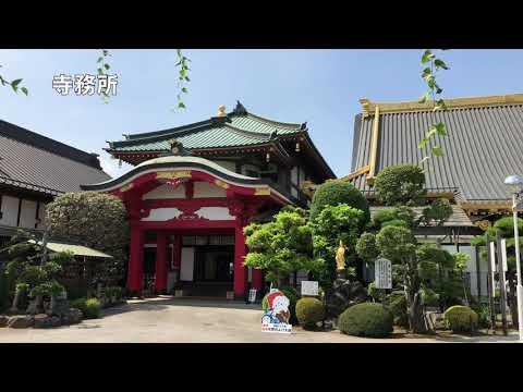 『栃木県佐野市』の動画を楽しもう!