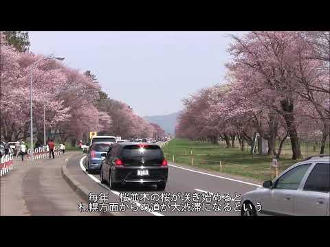 『北海道日高郡新ひだか町』の動画を楽しもう!