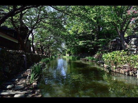『滋賀県近江八幡市』の動画を楽しもう!