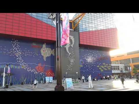 『大阪府大阪市港区』の動画を楽しもう!