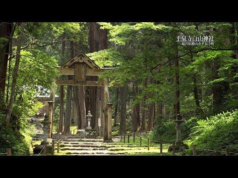 『福井県勝山市』の動画を楽しもう!