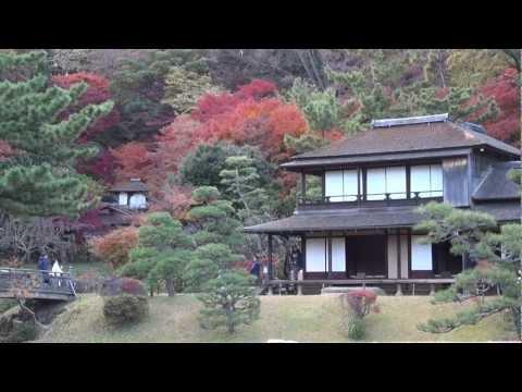 『神奈川県横浜市中区』の動画を楽しもう!