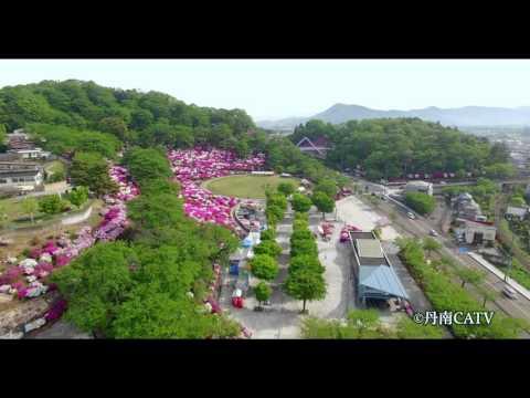 『福井県鯖江市』の動画を楽しもう!