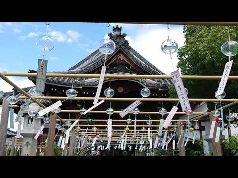 『奈良県橿原市』の動画を楽しもう!