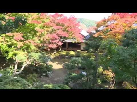 『高知県土佐市』の動画を楽しもう!