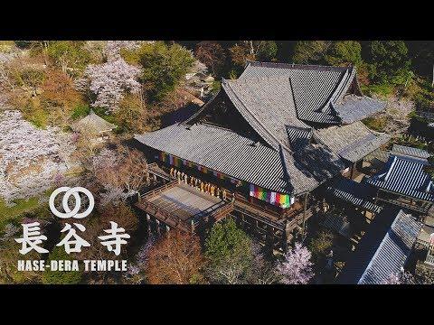 『奈良県桜井市』の動画を楽しもう!