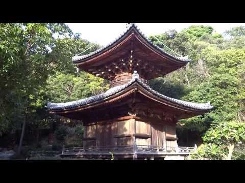 『和歌山県有田市』の動画を楽しもう!