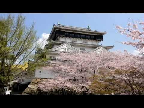 『福岡県北九州市小倉北区』の動画を楽しもう!