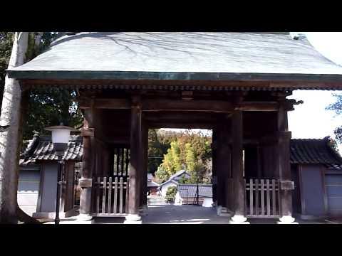 『熊本県熊本市南区』の動画を楽しもう!