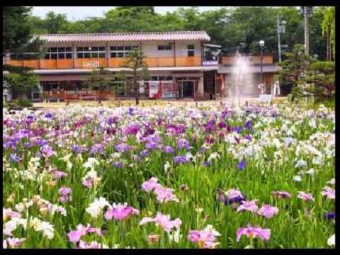 『山形県長井市』の動画を楽しもう!