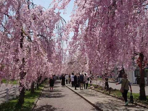 『福島県喜多方市』の動画を楽しもう!