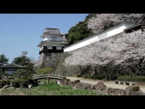 『長崎県大村市』の動画を楽しもう!