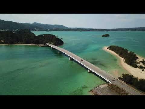 『沖縄県名護市』の動画を楽しもう!