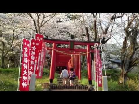 『静岡県浜松市浜北区』の動画を楽しもう!