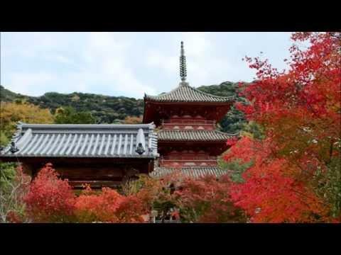 『兵庫県神戸市西区』の動画を楽しもう!
