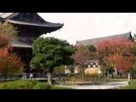 『京都府京都市南区』の動画を楽しもう!