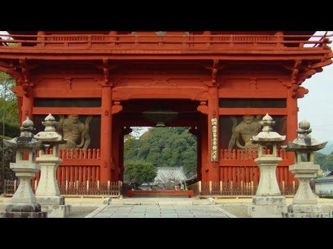 『和歌山県紀の川市』の動画を楽しもう!