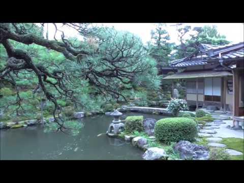 『鳥取県八頭郡智頭町』の動画を楽しもう!