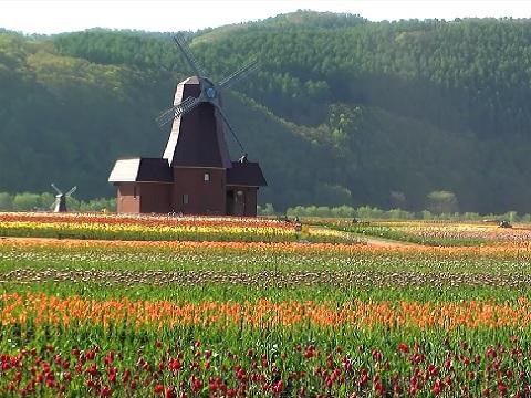 『北海道紋別郡湧別町』の動画を楽しもう!