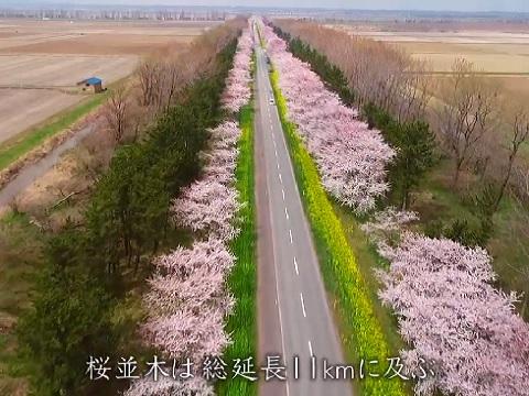 『秋田県南秋田郡大潟村』の動画を楽しもう!