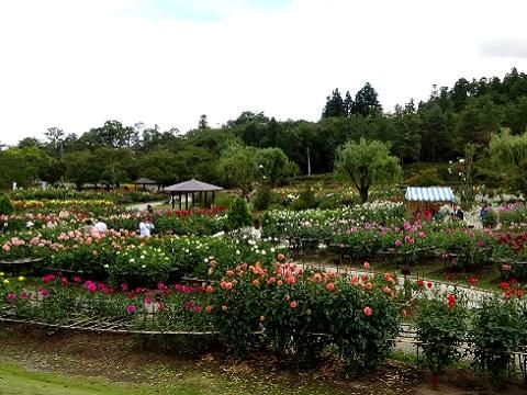 『山形県東置賜郡川西町』の動画を楽しもう!