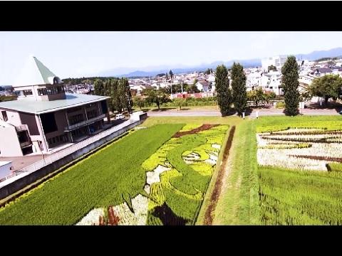 『福島県岩瀬郡鏡石町』の動画を楽しもう!
