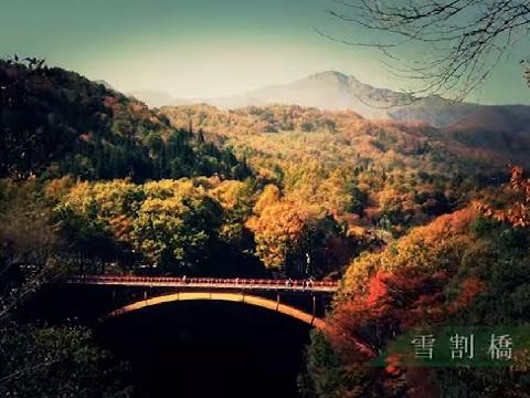 『福島県西白河郡西郷村』の動画を楽しもう!