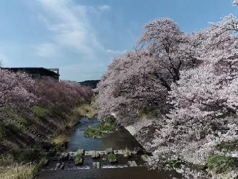 『福島県石川郡石川町』の動画を楽しもう!