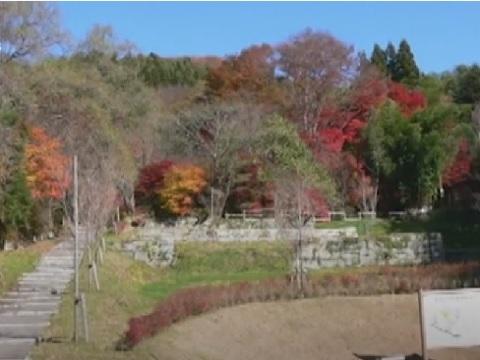 『福島県双葉郡葛尾村』の動画を楽しもう!