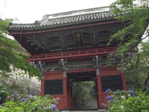 『茨城県桜川市』の動画を楽しもう!