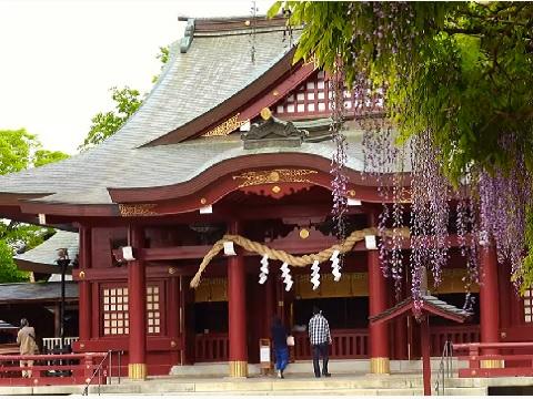 『茨城県笠間市』の動画を楽しもう!