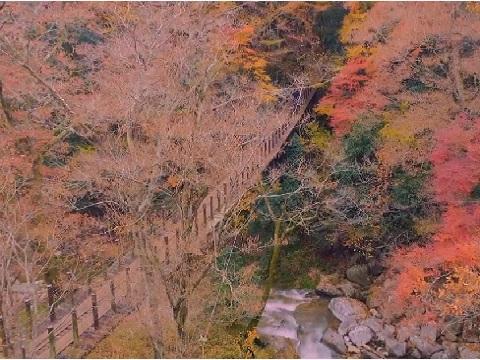 『茨城県高萩市』の動画を楽しもう!